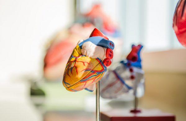 Здраво сърце в пандемия